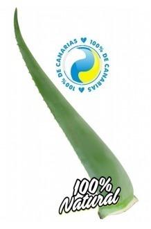 Aloe Vera Fresh Leaf Penca Zabila 12 years